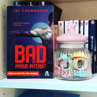 Bad T1 : Amour interdit - Jay Crownover